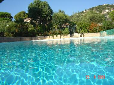 Holiday House In Cavalaire Sur Mer (Provence Alpes Cote Of Azure) Or