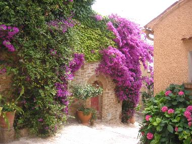 Holiday House in St.Tropez, Port Grimaud (Var) or holiday homes and vacation rentals