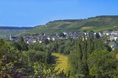 Holiday House in Maring-Noviand (Mosel - Saar) or holiday homes and vacation rentals