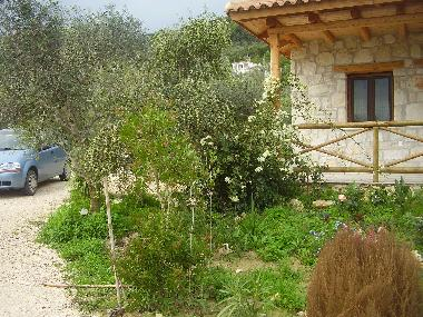 Holiday House in VASILIKOS (Zakynthos) or holiday homes and vacation rentals