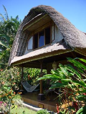 Ubud - Everything You Need to Know About Ubud - Bali