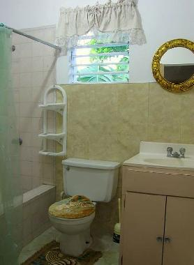 Upstairs apartment - Bathroom w. Shower
