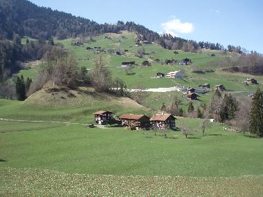 Holiday House in Arezen (Flims Laax Falera) or holiday homes and vacation rentals