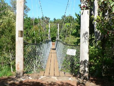The swinging bridge over Peterson Creek, at the bottom of the garden.