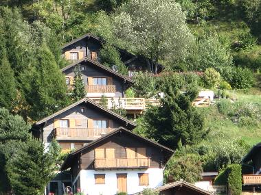 Chalet in Nax (Sion) or holiday homes and vacation rentals