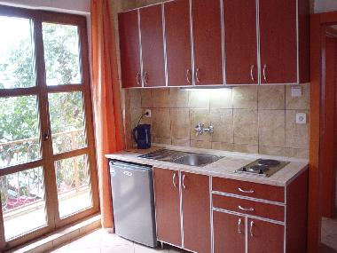 Holiday Apartment in Sutomore (Montenegro) or holiday homes and vacation rentals