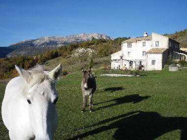 Holiday Apartment in Hautes Duyes (Alpes-de-Haute-Provence) or holiday homes and vacation rentals
