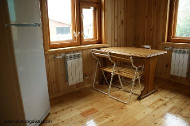 Chalet in Borovoye (Novosibirskaya Oblast') or holiday homes and vacation rentals