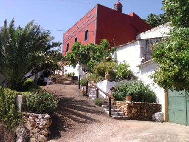 Holiday House in loule (Algarve) or holiday homes and vacation rentals