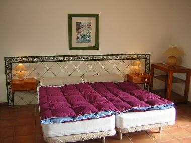 Holiday Apartment in 38400 (Teneriffa) or holiday homes and vacation rentals