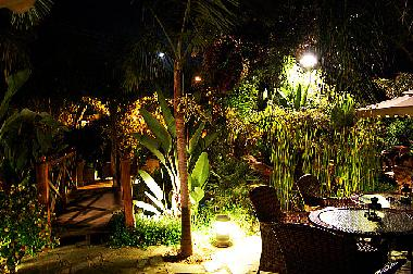 Tropical gardens at Night