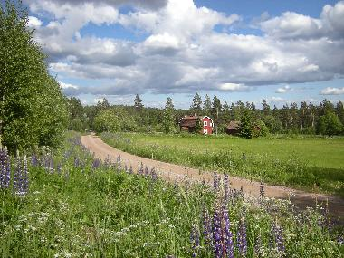 Holiday House in Kråkshult (Smaland) or holiday homes and vacation rentals