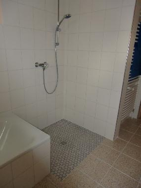 shower can be used by handicapes persons