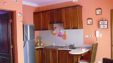 Holiday Apartment in dominicus (La Romana) or holiday homes and vacation rentals
