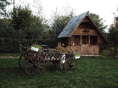 Bed and Breakfast in Avrig (Sibiu) or holiday homes and vacation rentals