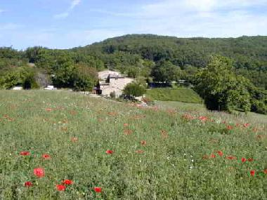 Holiday House in Grane (Drôme) or holiday homes and vacation rentals