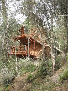 Chalet in Olympos (Antalya) or holiday homes and vacation rentals