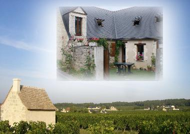 Holiday House in Ingrandes de Touraine (Centre) or holiday homes and vacation rentals