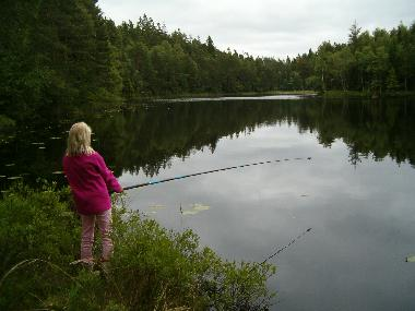 fishing in a small lake