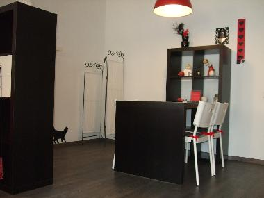 Holiday Apartment in St.Petersburg (Sankt-Peterburg) or holiday homes and vacation rentals