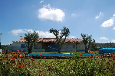 Holiday House in Melides (Alentejo Litoral) or holiday homes and vacation rentals