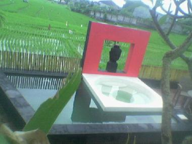 view on 135cm deep plunge pool with jacuzzi overlooking the sawah through the \