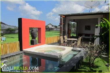 view on 135cm deep plunge pool with jacuzzi overlooking the sawah through the