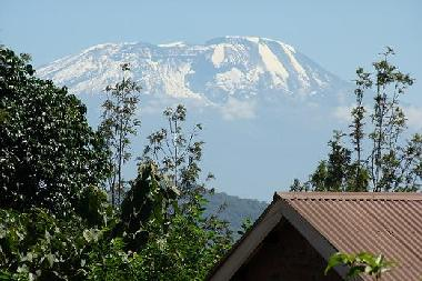 mt. kilimanjaro as seen from the cottages