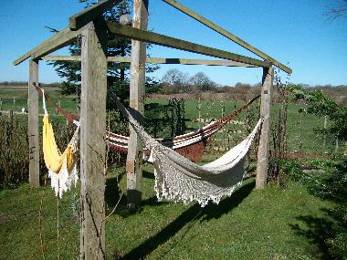Hammock Oasis at south end of garden