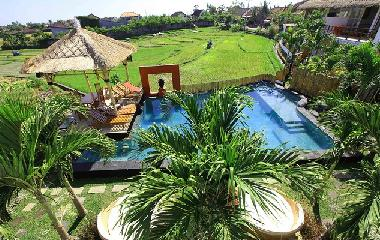 view from balcony over pool and part of rice-fields