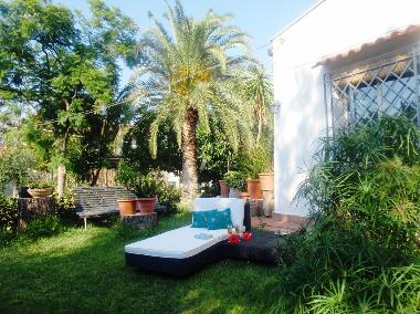Villa in Palermo (Palermo) or holiday homes and vacation rentals