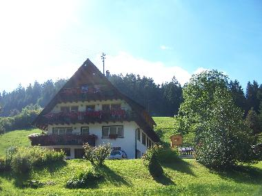 Holiday Apartment in Bad-Rippoldsau (Black Forest) or holiday homes and vacation rentals