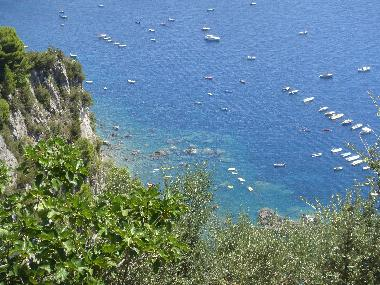 Holiday House in Massalubrense (Napoli) or holiday homes and vacation rentals