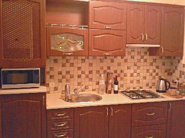 Holiday Apartment in lviv (L'vivs'ka Oblast') or holiday homes and vacation rentals