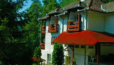 Villa in Sovata (Mures) or holiday homes and vacation rentals