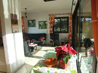 Holiday Apartment in Puerto de la Cruz (Teneriffa) or holiday homes and vacation rentals