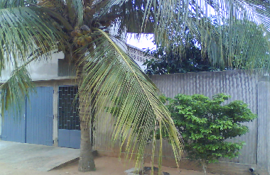 Villa in Lomé (Lome) or holiday homes and vacation rentals