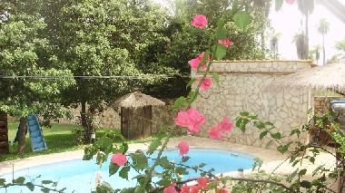Holiday House in Nueva Colombia  (Cordillera) or holiday homes and vacation rentals