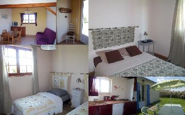 Holiday House in Lacapelle-Ségalar (Tarn) or holiday homes and vacation rentals