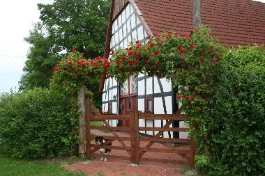 Holiday House in Bad Essen/Heithöfen (Osnabrücker Land) or holiday homes and vacation rentals