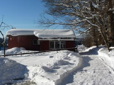 Chalet in Lajoux (La Chaux-de-Fonds) or holiday homes and vacation rentals