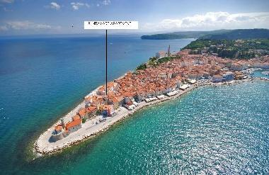 PIRAN PUNTAMARE APARTMENT LOCATION -  20 m from the sea