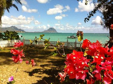 Sea view from your veranda, overlooking Le Morne mountain