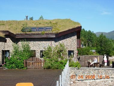 beachhouse with grassroof