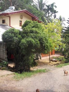 Holiday House in Induruwa (Kalutara) or holiday homes and vacation rentals