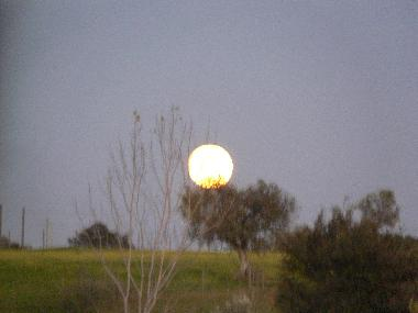 The rising of a full moon