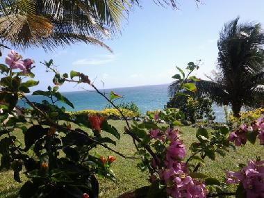 Holiday House in Goodwood (Tobago) or holiday homes and vacation rentals