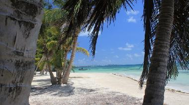 Holiday House in San Andres (San Andres y Providencia) or holiday homes and vacation rentals