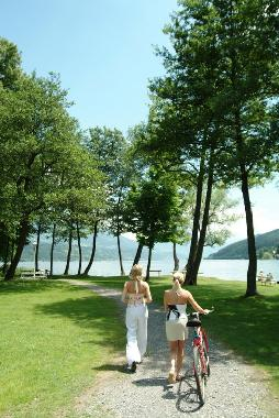 Bed and Breakfast in Seeboden am Millstätter See (Oberkärnten) or holiday homes and vacation rentals