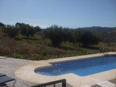 View from the terrace to pool olive groves & mountains.